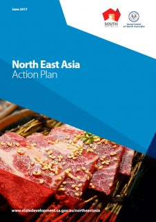 North East Asia Action Plan
